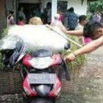 PENEMUAN MAYAT DEMAK : Pencari Rumput Purwodadi Tewas di Demak