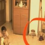 KISAH MISTERI : Kamera Tersembunyi Rekam Bocah Perempuan Diganggu Makhluk Halus