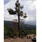 Kades Wonorejo, Jatiyoso, Sudrajat, menjajal menara atau rumah pohon buatan Karang Taruna Dusun Puntuksari, Selasa (10/1/2017). (JIBI/Solopos/Istimewa)