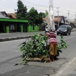 KECELAKAAN KENDAL : Kerap Bikin Celaka, Jalan Rusak Ditanami Dahan Pohon