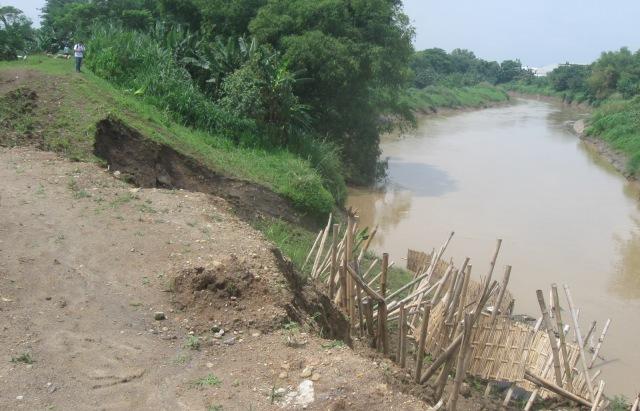 Kondisi talut Sungai Samin di Dusun Kesongo, Desa Tegalmade, Mojolaban, Sukoharjo, Senin (30/1/2017). (Trianto Hery Suryono/JIBI/Solopos)