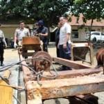 KRIMINALITAS KARANGANYAR : Eks Pegawai Pabrik Pupuk Membuat dan Menjual Pupuk Secara Ilegal