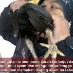 KISAH UNIK : Makan Ayam Hidup-Hidup, Perempuan Jatim Ini Ingin Sembuh