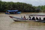 WISATA KULONPROGO : Menyusuri Hutan Mangrove dengan Perahu Wisata