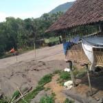 PETERNAKAN BANTUL : Satpol PP Segera Klarifikasi Kandang Ilegal di Parangtritis