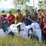 PERTANIAN SLEMAN : Petani Hasilkan Padi 9,18 Ton per Hektare