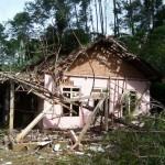 Kondisi rumah di Kecamatan Ngrayun, Ponorogo, yang rusak parah lantaran tertimpa pohon roboh, Senin (6/2/2017). (Istimewa/BPBD Ponorogo)