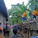 ANGIN KENCANG KLATEN : Angin Kencang Terjang Cawas dan Karangdowo