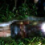 Foto Akbar saat ditemukan tak bernyawa di dalam perut ular piton. (Istimewa/Youtube)