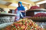 Harga Cabai Rawit di Jogja Tembus Rp60.000