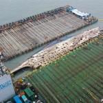 3 Tahun Karam, Korsel Sukses Angkat Bangkai Kapal Sewol