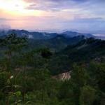 WISATA SOLORAYA : Keindahan Hutan Pinus Bukit Kars Wonogiri