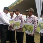 Mentan Tegaskan Gabah Petani Pasti Dibeli Rp3.700/kg oleh Bulog