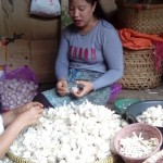 PASAR TRADISIONAL SOLO : Dari Kulit hingga Batang Kering Bawang Pasar Legi Semua Laku