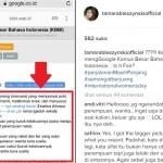 Tamara Bleszynski Persoalkan Arti Perempuan di Kamus Bahasa Indonesia Ini
