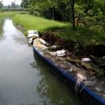 PERTANIAN BOYOLALI : Irigasi Ambrol, 150 Ha Sawah Karanggede Terancam Kekeringan
