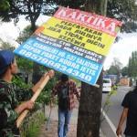 FOTO HARI BUMI : Paku Pohon di Kota Salatiga Dicabuti