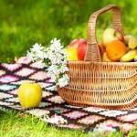 Ilustrasi buah-buahan (Savingdinner,com)