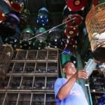 PASAR TRADISIONAL SEMARANG : Pasar Satwa Bakal Dipecah, Inilah Alasannya…