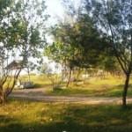 WISATA KENDAL : Pantai Muara Kencan Tak Terurus, Wisatawan Kecewa