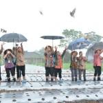 Andalkan Bima, Kampung Organik Lereng Merapi Boyolali Binaan BI Solo Diluncurkan