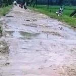 Jalan penghubungk Desa Bendoharjo dan Desa Kalipang di Kecamatan Gabus, Kabupaten Grobogan, Jateng hancur. (Facebook.com-Wahyu Uut)