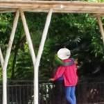 KENAKALAN REMAJA : Taman Selasar Salatiga Jadi Lokasi Pacaran, Netizen Risi