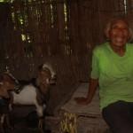 Samitun, 86, hidup bersama tiga ekor kambingnya di rumah sederhana di RT 001/RW 003, Dusun Brangkal, Desa Biting, Kecamatan Badegan, Ponorogo, Jumat (21/4/2017). (Abdul Jalil/JIBI/Madiunpos.com)