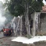 Damkar Solo Musnahkan Sarang Tawon Berdiameter 0,5 Meter