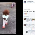 Anjing berjalan tegak mirip seorang bocah (Facebook @animalnarak22)
