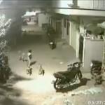 Bocah pemberani menghalau empat anjing yang mengepungnya. (Istimewa/Twitter)
