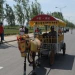 Kuda besi milik Dong menjadi perhatian warga (Vision China)