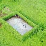 Lapangan futsal di tengah hutan belantara. (odditycentral.com)