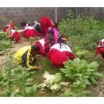 Murid-murid Qimei bermain di taman di sekolah. (Handout)