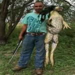 Kodok raksasa ditemukan di Texas (Facebook)