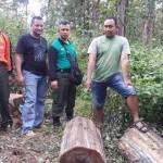 PENCURIAN PONOROGO : Polisi Gerebek Komplotan Maling Kayu, 1 Tertangkap, 3 Kabur