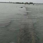 INFRASTRUKTUR DEMAK : Jalan di Sayung Tenggelam, Netizen Prihatin