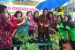 KISAH INSPIRATIF : Warga Kampung Distrikan Solo Tanam 1.000 Cabai