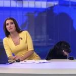 Pembaca Berita Ini Kaget Ada Anjing Ikut Siaran Langsung
