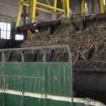 APTRI Desak Kemendag Cabut Legalisasi Monopoli Gula oleh Bulog
