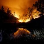 57 Orang Tewas dalam Kebakaran Hutan di Portugal