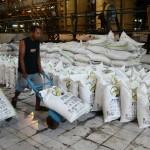 Petani Tebu Terlalu Lama Tunggu Pemerintah Serap Gula
