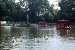 KOMPETISI VIDEO : Mau Gratis Piknik ke Objek Wisata Pilihan, Yuk Ikut Lomba Ini!