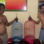 PENCURIAN SRAGEN : Polisi Bekuk 2 Pemuda Spesialis Pencuri Burung
