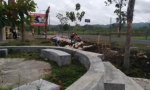 Pekerja membangun pagar taman dekat gerbang masuk/keluar Museum Karst Indonesia, Pracimantoro, Wonogiri, belum lama ini. (Rudi Hartono/JIBI/Solopos)