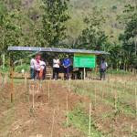 KISAH INSPIRATIF : Panen Bawang Merah Capai 13 Ton per Hektare (2/2)