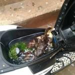 Bagasi sepeda motor dijadikan kolam berisi ikan dan bebek (Facebook Rinni Prisma )