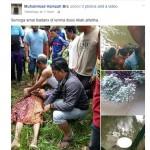 Buaya seret jasad manusia ke pinggir sungai di Berau, Kalimantan Timur (Facebook)
