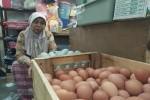 Jelang Akhir Tahun, Harga Telur di Jogja Tinggi