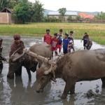 Mayoritas Desa Wisata di Bantul Belum Produktif